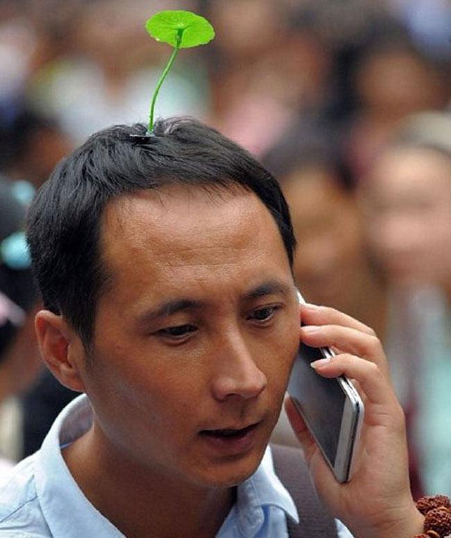 La tendencia de china del día: es completamente fantástico tener un retoño creciendo arriba de tu cabeza