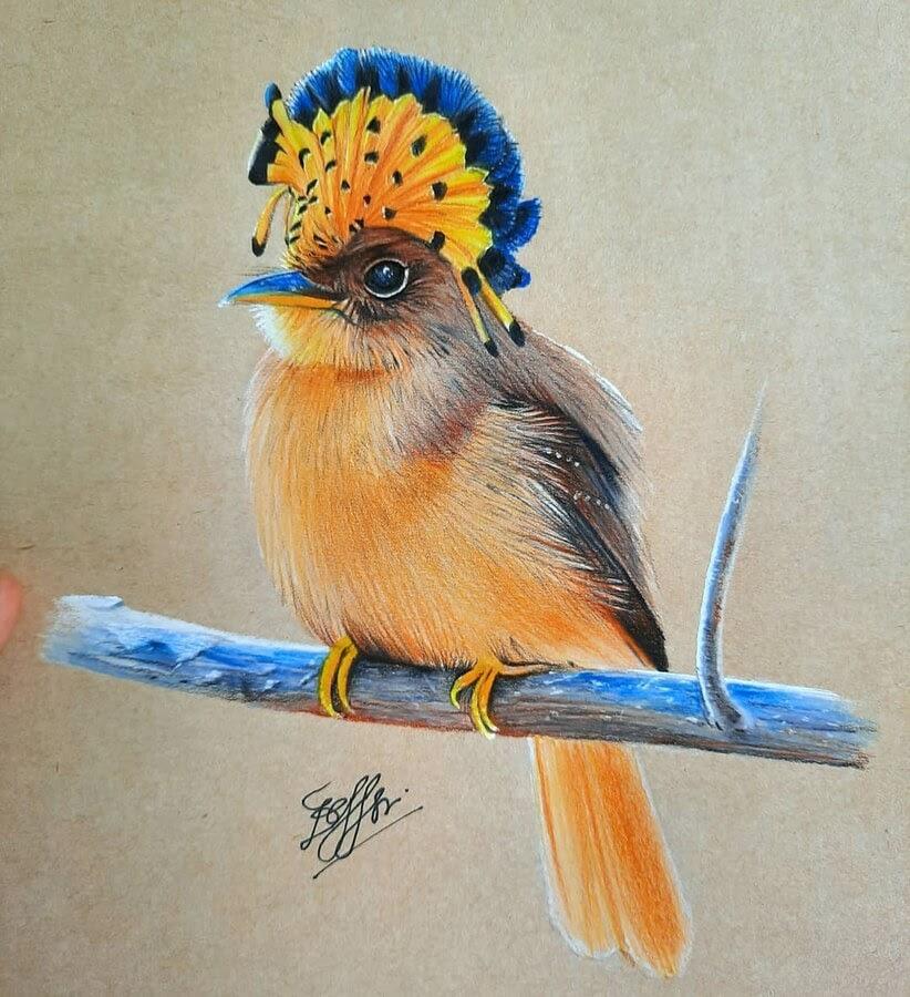 09-Bele-Birds-Drawings-www-designstack-co