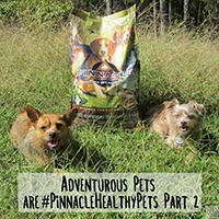 Pinnacle dog food review