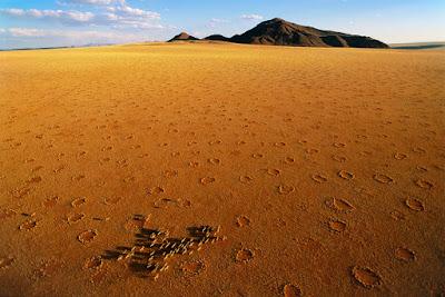 Cerchi misteriosi nel deserto Sud Africano