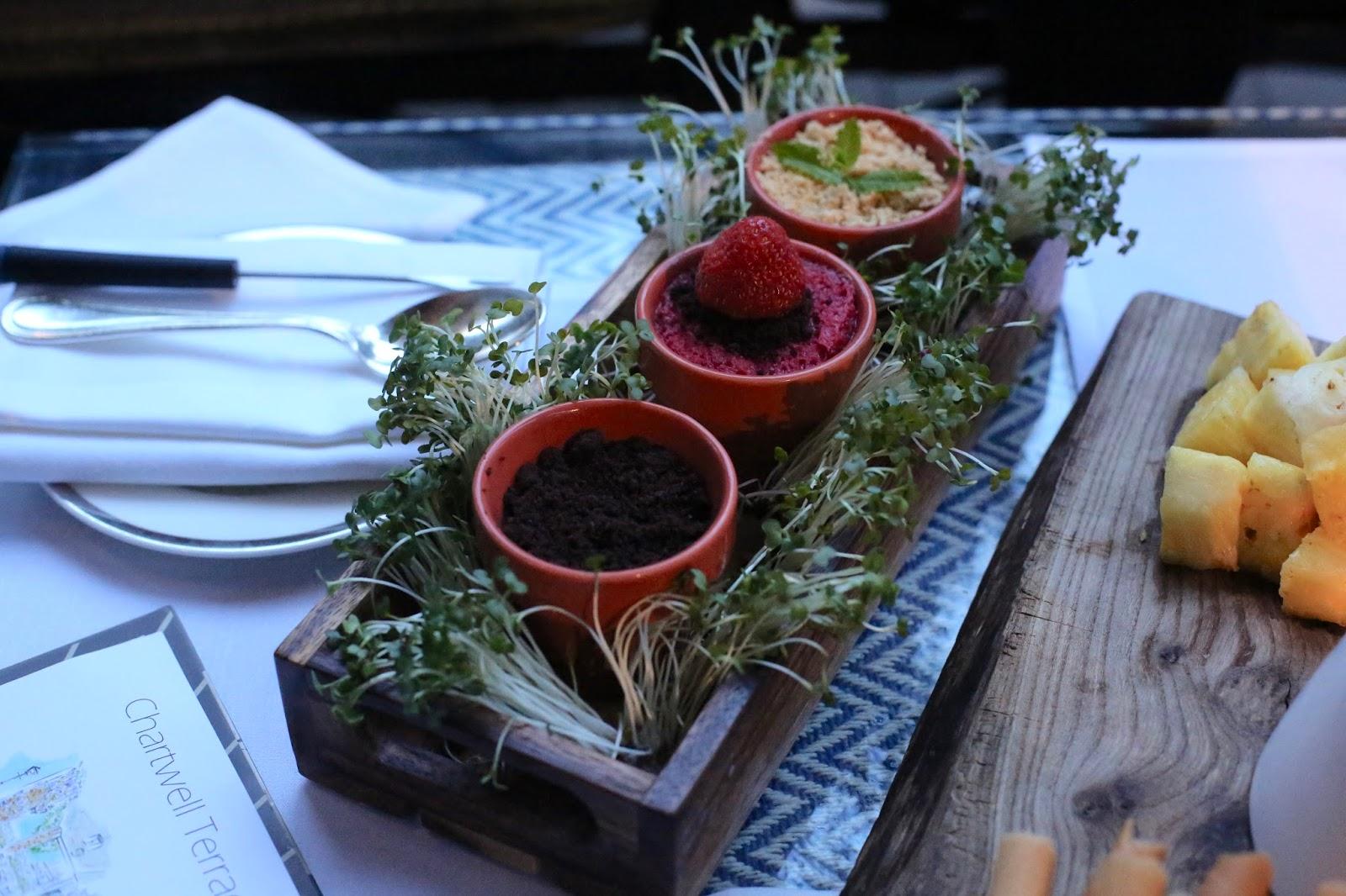 plant pot dessert