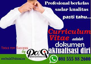 buat curriculum vitae online