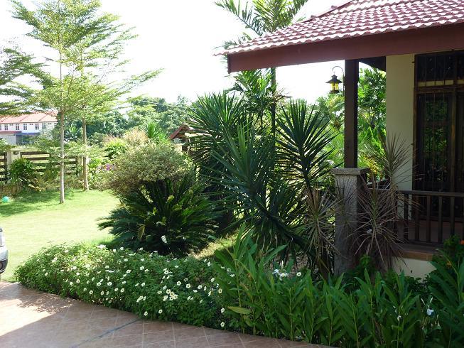 Halaman Rumah Pokok Hiasan Landskap