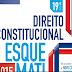 Baixar Livro PDF Direito Constitucional 19ª Ed. : Download