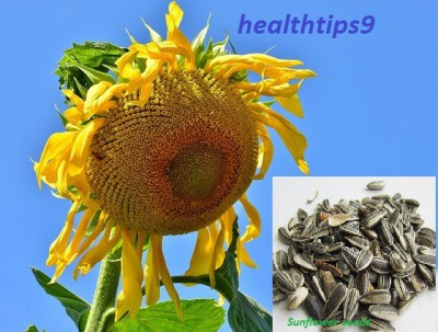 Vitamin E sources।Vitamin E benefits