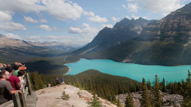 Peyto Lake and Louise Lake