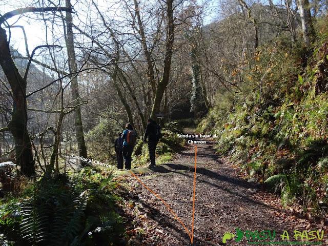 Senda del Chorrón y Foz del Río Valle: Desvío para ver el Chorrón