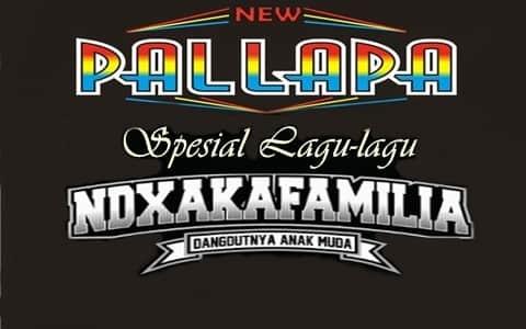 download kumpulan lagu New Pallapa Spesial NDX AKA