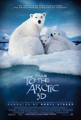 To The Arctic – DVDRIP LATINO