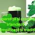 Superstiții și credințe irlandeze | Semnificații și tradiții
