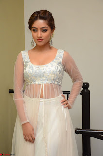 Anu Emmanuel in a Transparent White Choli Cream Ghagra Stunning Pics 106.JPG