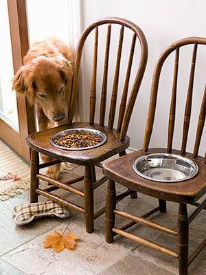 Platos para la comida del perro.