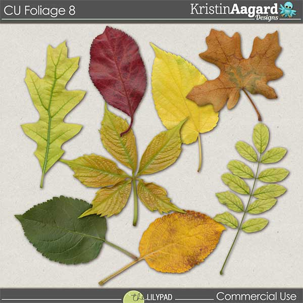 http://the-lilypad.com/store/digital-scrapbooking-cu-foliage-8.html