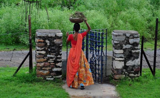 chittorgarh fort life rajasthan town heritage colorful women