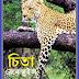 Bangla Translated Ebook Named Chita By Rene Guillot