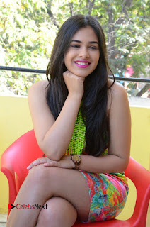 Telugu Actress Prasanna Stills in Short Dress at Inkenti Nuvve Cheppu Press Meet Stills  0171.JPG