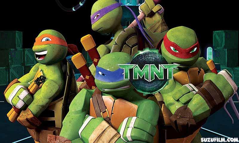 teenage mutant ninja turtles cartoon in hindi download