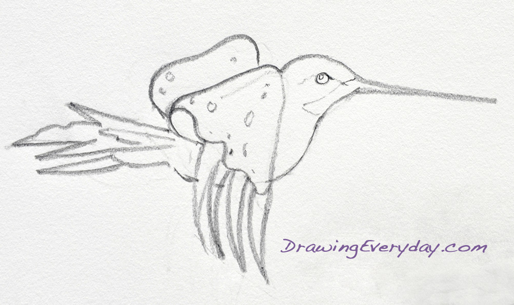 Drawing Everyday*: Fancy Hummingbird