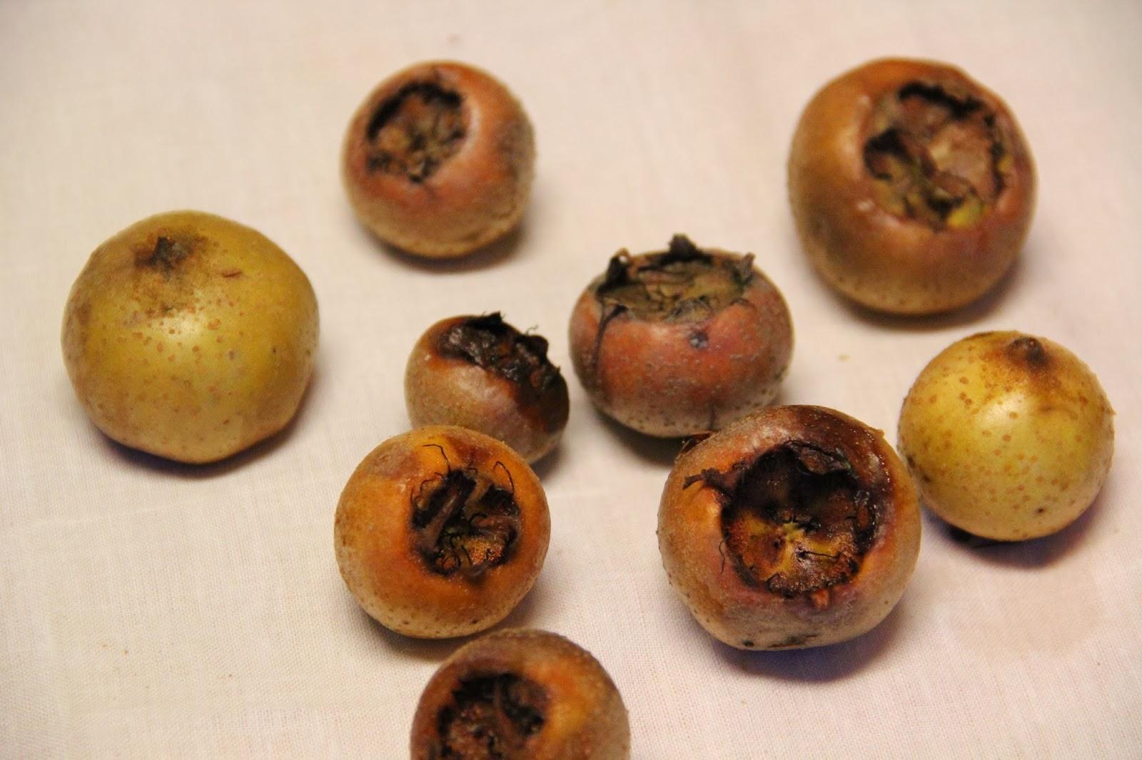 silvicultrix  nachhaltig handeln mispel gelee