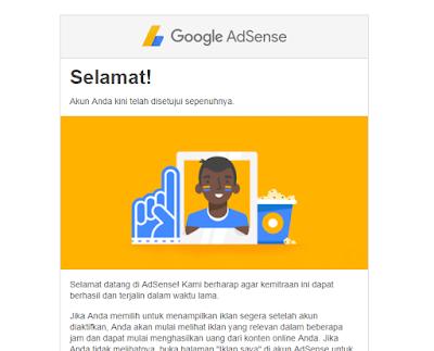 Diterima Google Adsense Non Hosted Full Approve