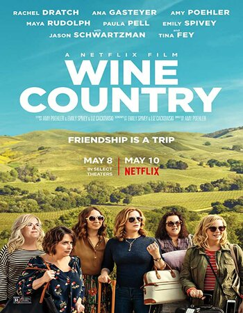 Wine Country (2019) Dual Audio Hindi 720p WEB-DL x264 1GB ESubs Movie Download