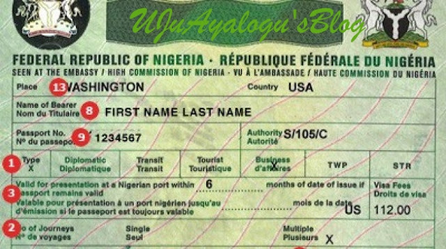 Image result for Nigeria makes visa processes for tourists, investors easier