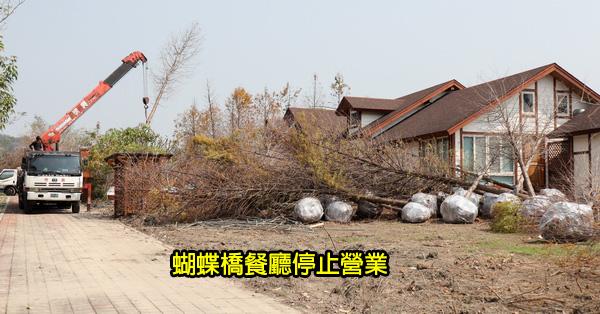 台中北屯|蝴蝶橋餐廳結束營業|落羽松森林消失|大坑少了一家特色餐廳