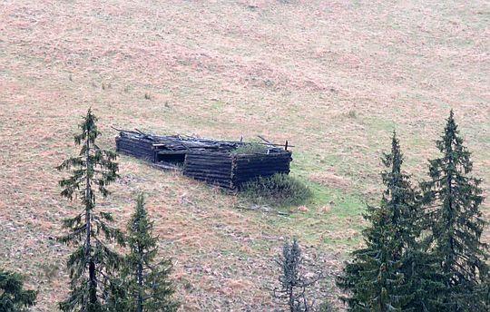 Zniszczony szałas pasterski na Hali Turbacz.