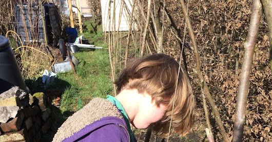 Getting to Grips: Little D's Trip to the Gardening Side