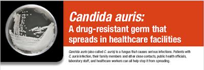 https://www.cdc.gov/fungal/candida-auris/c-auris-drug-resistant.html