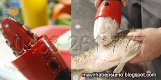 vảy cá đã được máy làm sạch
