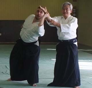 Shihan Aikido