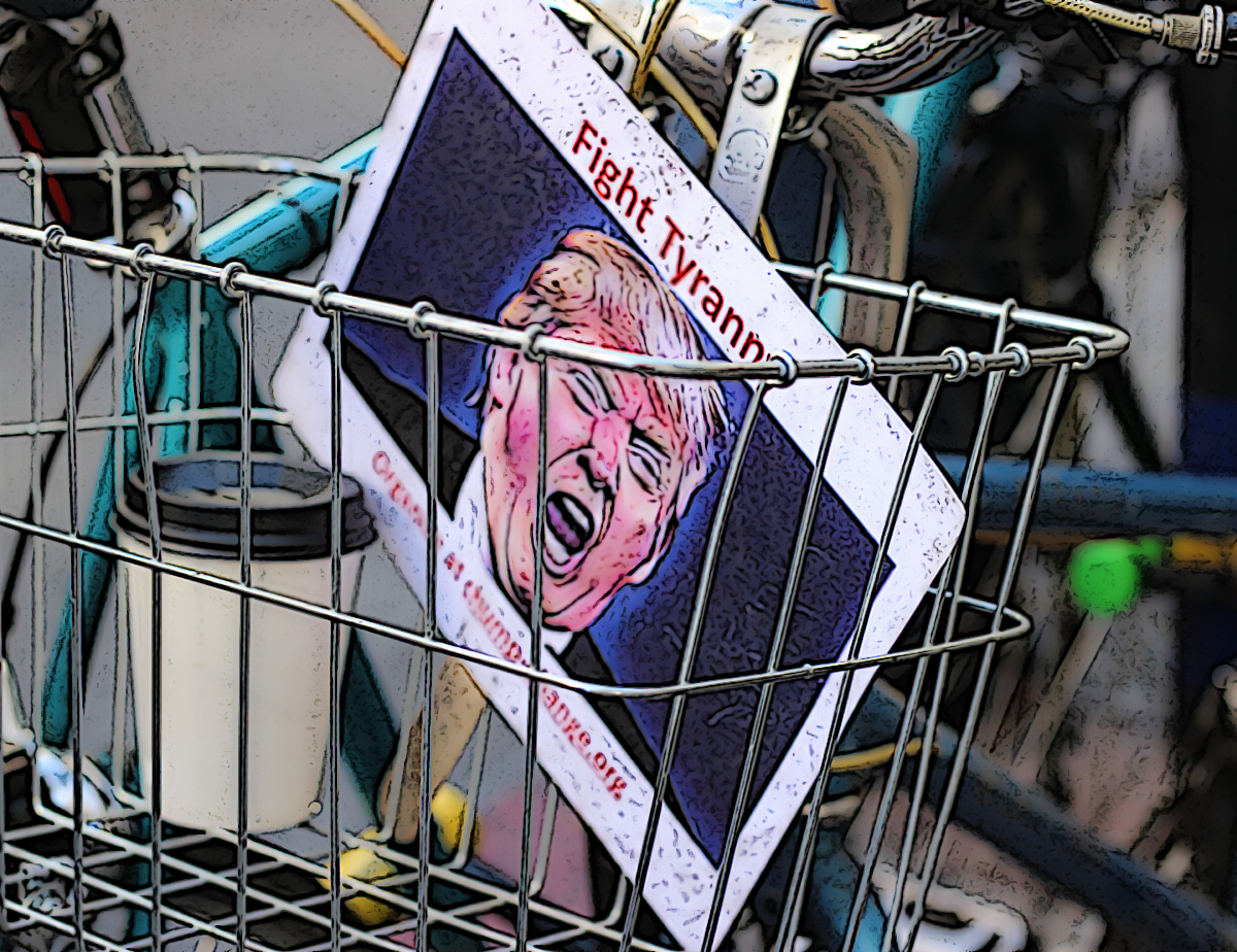 trump picture in basket