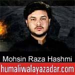 https://www.humaliwalyazadar.com/2018/10/mohsin-raza-hashmi-nohay-2019.html