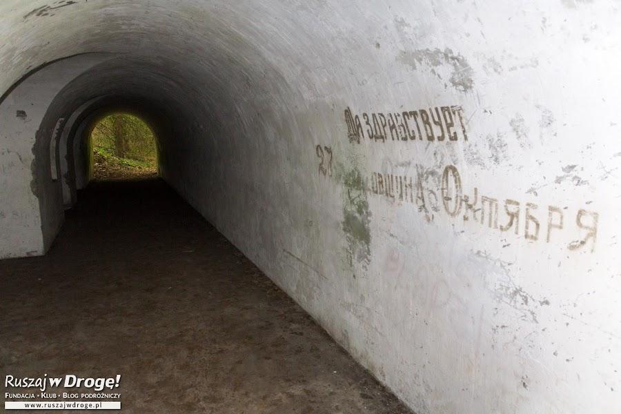 Fortyfikacje na ścieżce edukacyjnej w Biebrzańskim Parku