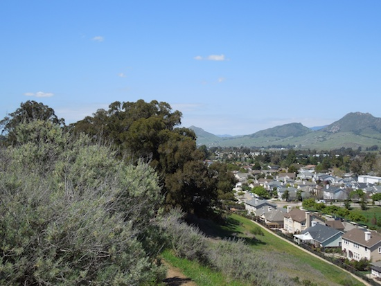 The Irish Hills of San Luis Obispo
