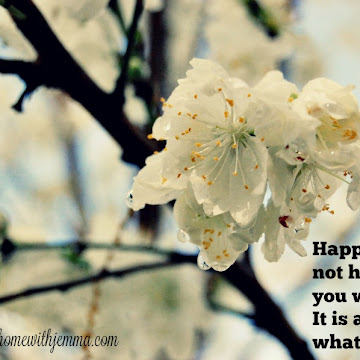 Wandering Wednesday~Quotes