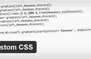 Simple custom CSS plugin for WordPress blogs