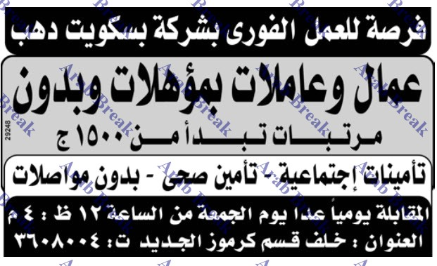 وظائف وسيط الاسكندرية ليوم الجمعة