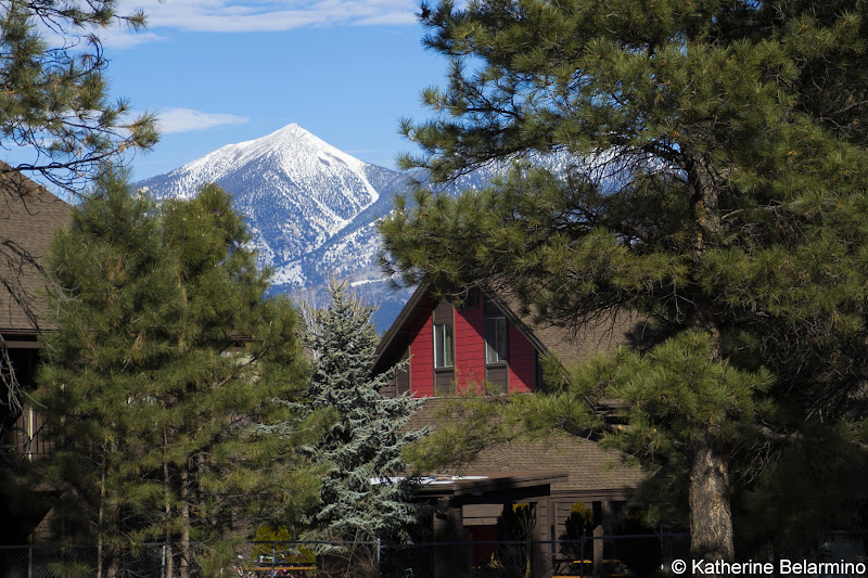 San Francisco Peaks from Riordan Mansion Things to Do in Flagstaff in One Day