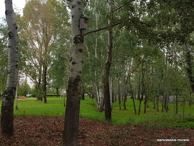 Ursynów teren zielony parki warszawskie rzeźba