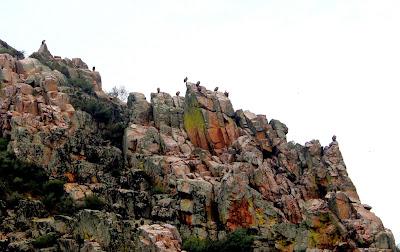 Mirador Portillo del Tiétar. Monfragüe. Cáceres