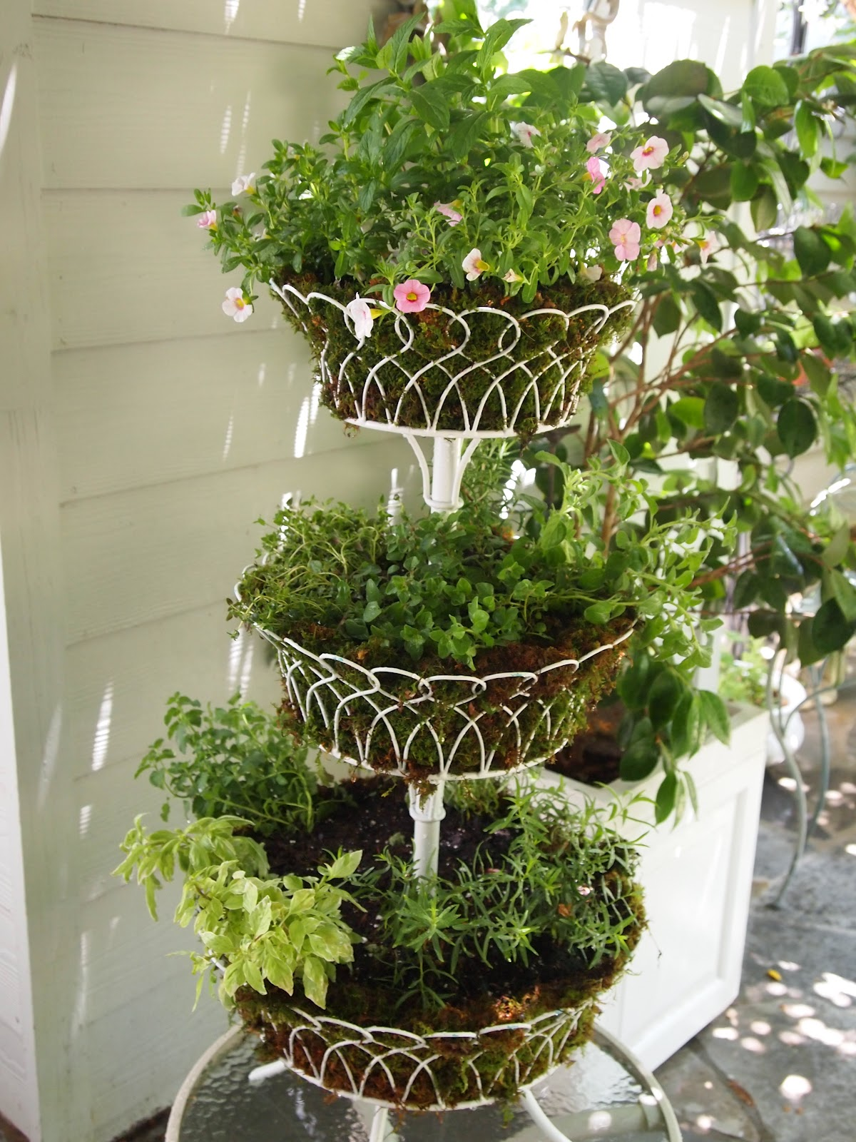 Three Tier Flower Pots Marie Arden Pink Living Tutorial Three Tier Wire Herb Planter
