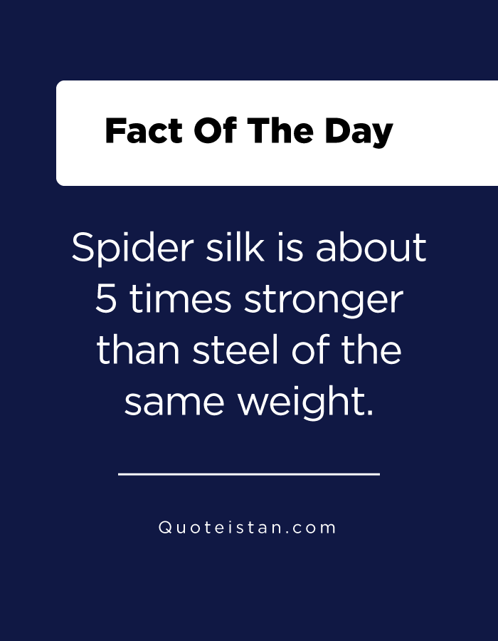 Spider silk is about 5 times stronger than steel of the same weight.