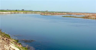 Art of Living Festival Damaged Yamuna Floodplains: NGT