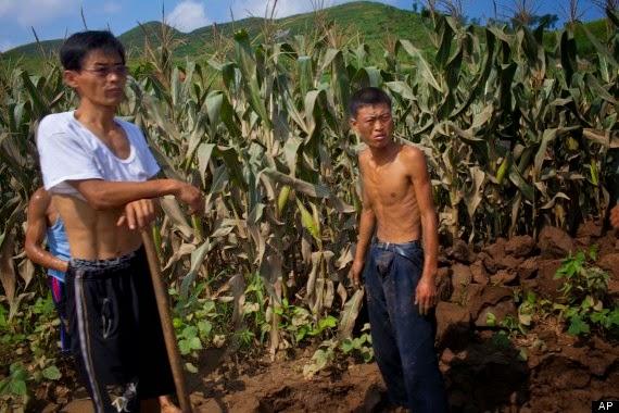 Grave sequía causa crisis alimentaria en Corea del Norte