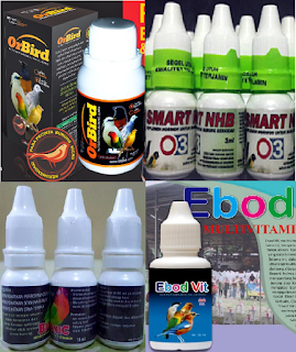 suplemen vitamin burung lovebird