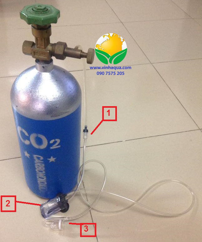 Cách lắp bình CO2 cho hồ thủy sinh
