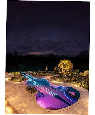 Image of Award Winning Stradivarius Violin Pool Cipriano Landscape Design Nj