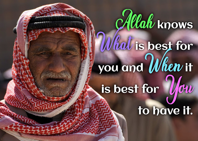 islamic knowledge quotes